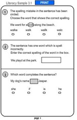 Year 3 Literacy Naplan Samples Printable